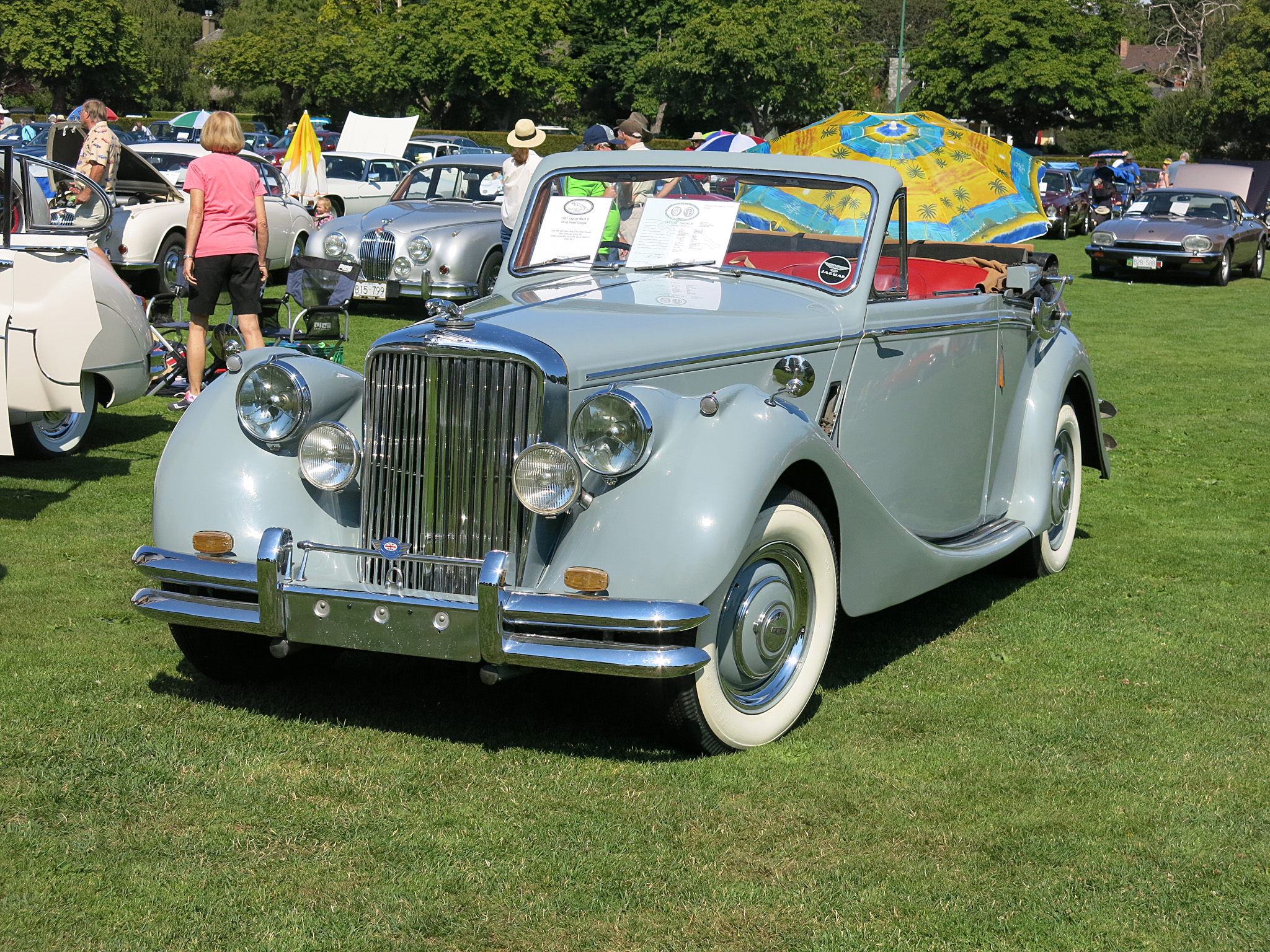Birch Grey 1950 Jaguar MkV Drophead Coupe °640107
